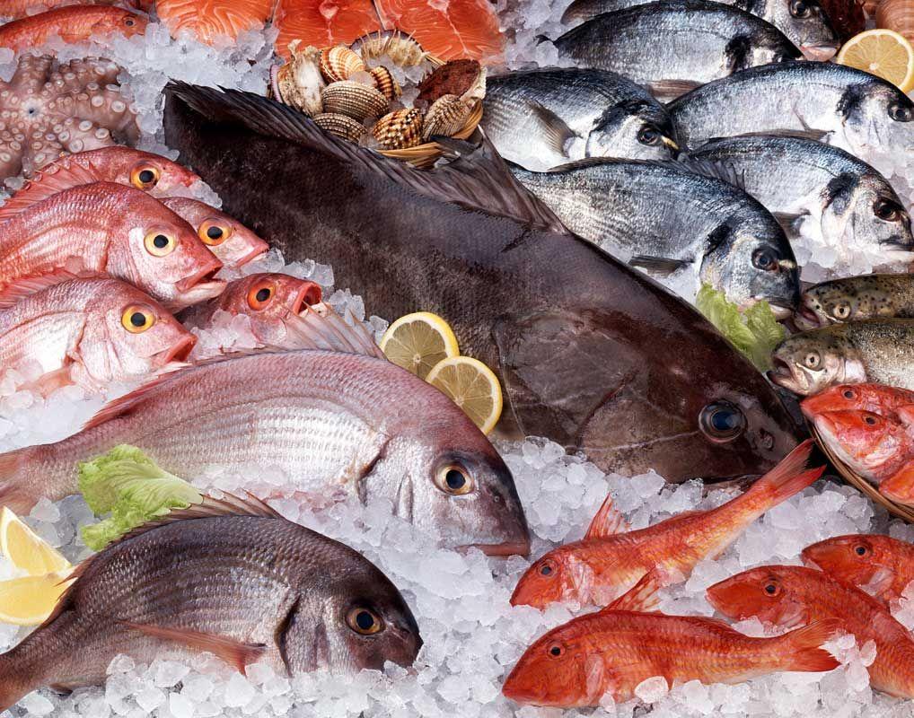 A operação tem o objetivo de garantir a qualidade do pescado, principalmente em pontos de comercio da periferia, locais que maior venda do produto