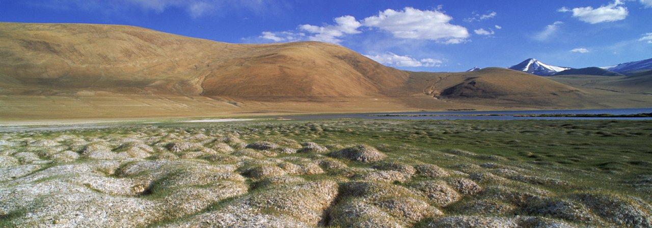 O avanço do aquecimento global pode liberar na atmosfera um enorme volume de metano e dióxido de carbono retido no permafrost, o solo perenemente congelado do Ártico. O processo, segundo cientistas, já começou e tem potencial de acelerar ainda mais a elevação das temperaturas no planeta