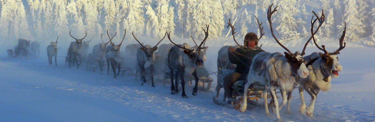 Enquanto uma forte onda de frio assola a América do Norte e a Europa, a cidade siberiana de Yakutsk, no norte da Rússia, vive tranquilamente mais um inverno no qual a temperatura chega facilmente aos 45 graus centígrados negativos!