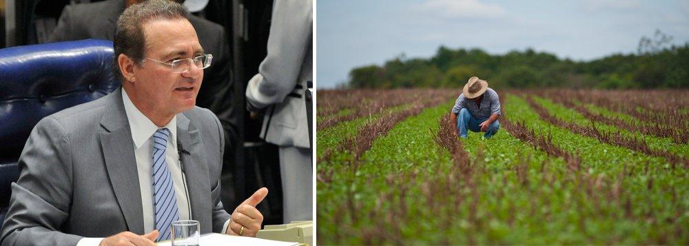 O Senado Federal aprovou Medida Provisória que reabre os prazos para renegociação das dívidas dos produtores rurais; dívidas de até R$ 100 mil para projetos localizados na área de atuação da Superintendência de Desenvolvimento do Nordeste (Sudene), terão direito a desconto para liquidação até 31 de dezembro de 2015