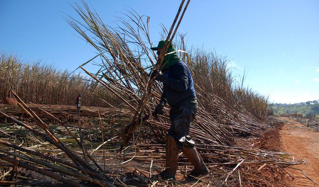 A votação para uma nova subvenção destinada aos produtores de cana-de-açúcar do Nordeste foi aprovada por unanimidade no Senado Federal, e será encaminhada para a sanção da presidente Dilma Rousseff (PT); o subsídio, no valor total de R$ 190 milhões, é referente a safra 2012/2013 e irá beneficiar cerca de 25 mil produtores do setor sucroalcooleiro; com o fim do processo no Senado, a proposta de subvenção deve ser avaliada em até quinze dias, quando a presidente sancionará ou não a concessão do benefício; setor sucroalcooleiro, porém, considera que valor liberado é insuficiente para cobrir os prejuízos provocados pela seca