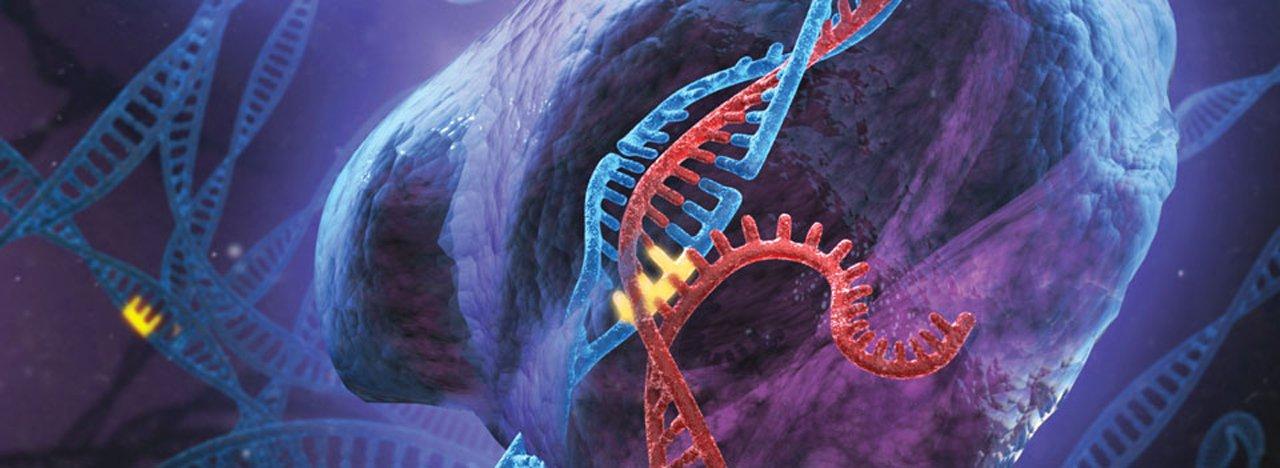 A origem dos raios cósmicos, a utilidade do sono, novas abordagens na luta contra o câncer: a pesquisa científica em 2013 foi longe, e promete muito mais no futuro