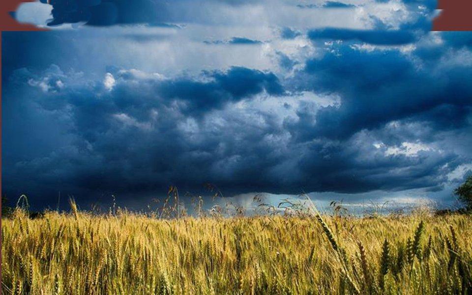 Fome e mudança climática. Uma pessoa de cada dez passa fome no mundo