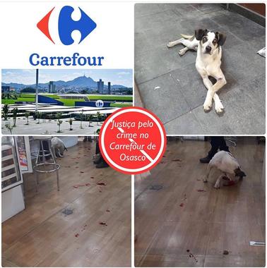 Crueldade - cão é espancado até a morte no Carrefour Osasco