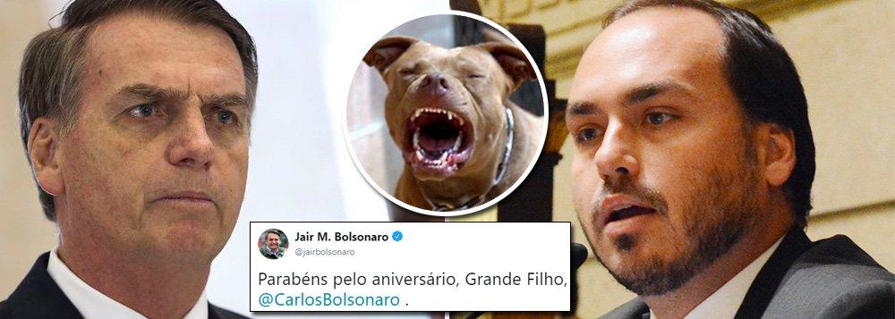 Bolsonaro parabeniza seu filho mais agressivo: obrigado, meu pitbull