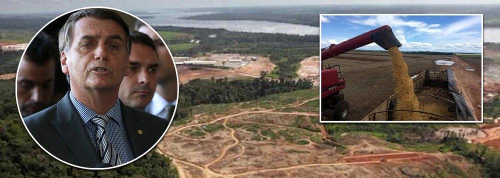 Brasil, pária global: Bolsonaro quer tirar o país do Acordo do Clima