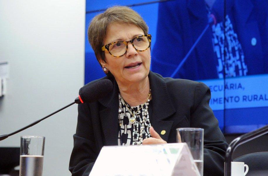 Tereza Cristina nega ter beneficiado a JBS