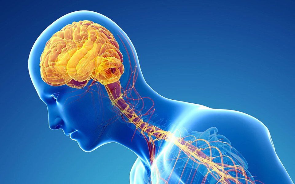 Mal de Parkinson. Doença ataca também os mais jovens