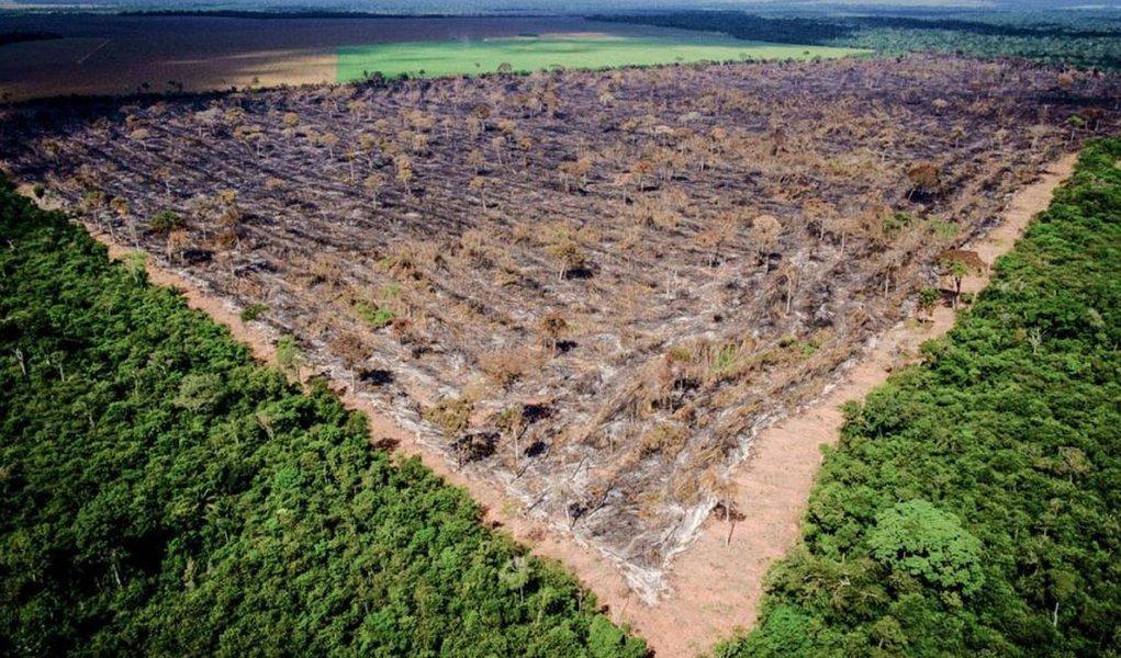 Grilagem sofisticada permitiu o desmate ilegal de áreas imensas no Mato Grosso