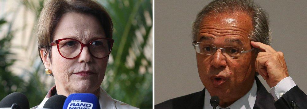 Ministra da Agricultura teme que Paulo Guedes leve o agronegócio à falência
