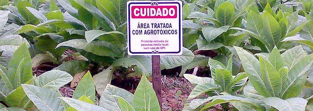 Governo libera registro de 28 agrotóxicos altamente tóxicos