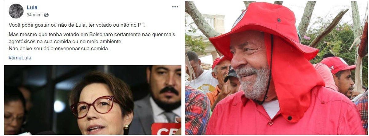 Lula critica liberação de agrotóxicos: não deixe seu ódio envenenar sua comida