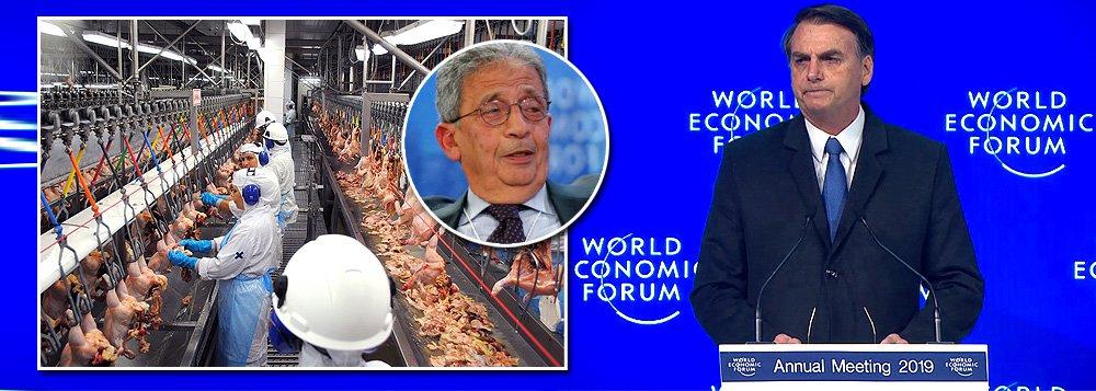 Bolsonaro custa caro: árabes se dizem em fúria com seu governo