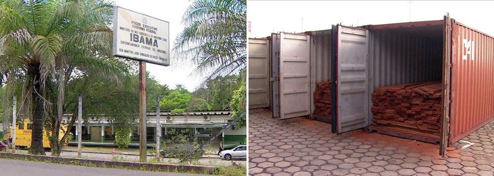 PF realiza operação contra comércio ilegal de madeira na Amazônia