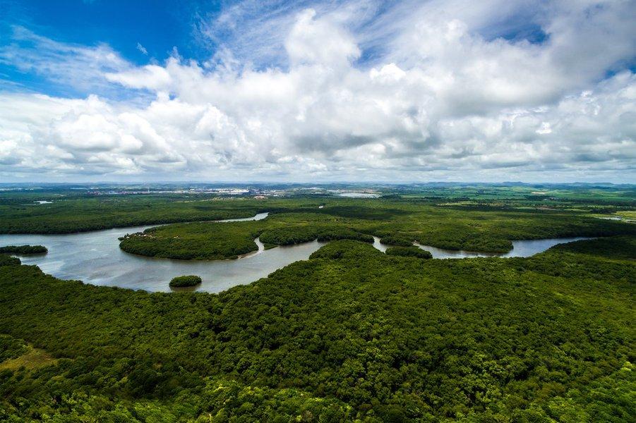 Governos adiam enfrentamento do problema ambiental, diz especialista