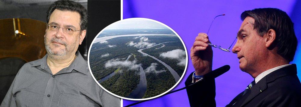 Pimenta sobre Amazônia: Bolsonaro abre a porta do galinheiro para a raposa