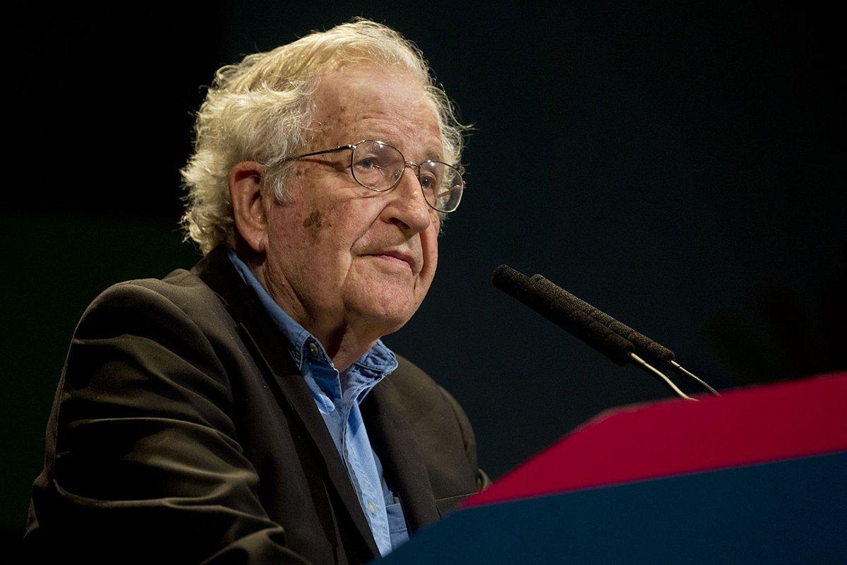 Chomsky: cresce o apoio aos palestinos na opinião pública dos EUA