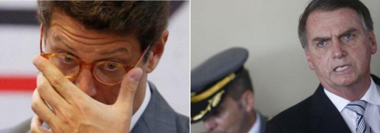Bolsonaro barra ação do Ibama contra madeira ilegal e comete crime de responsabilidade