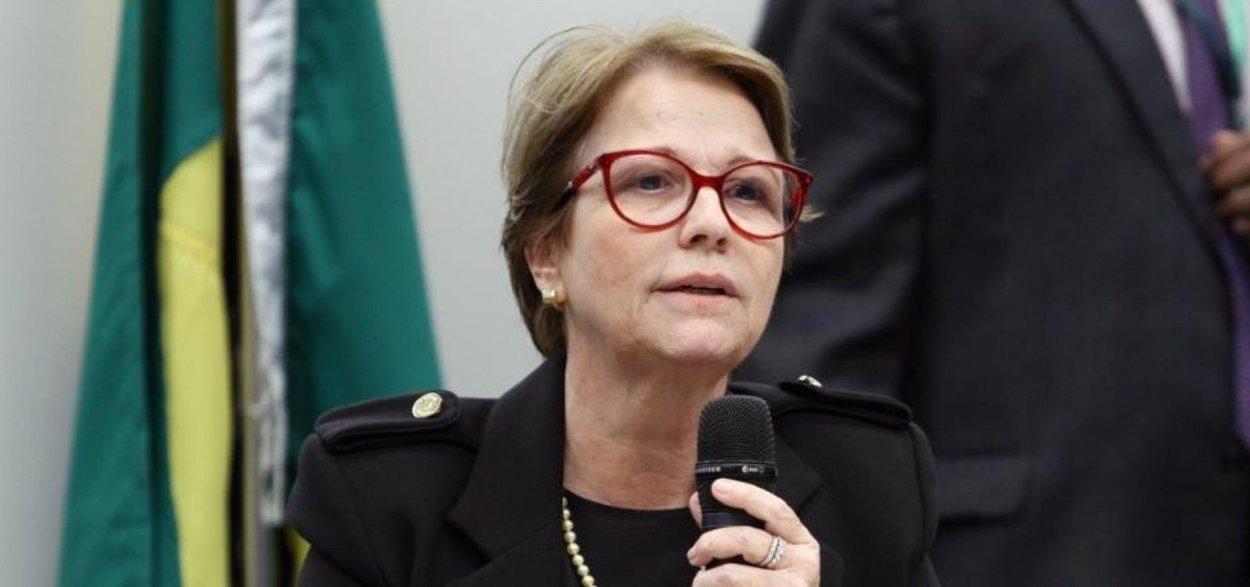 Com diplomacia paralela, ministra da Agricultura contorna incompetência de Ernesto Araújo