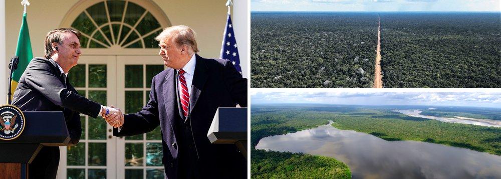 Bolsonaro anuncia entrega da Amazônia aos EUA