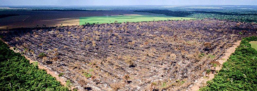 Sabotagem do trabalho do INPE na Amazônia exala cheiro de ilegalidade no MMA