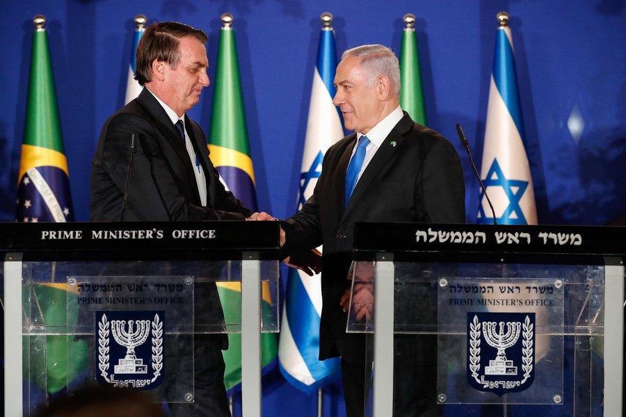 Advogado pede que árvore plantada por Bolsonaro em Israel seja arrancada