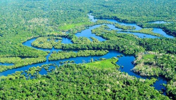 Sabotagem do trabalho do INPE na Amazônia exala cheiro de propina no MMA