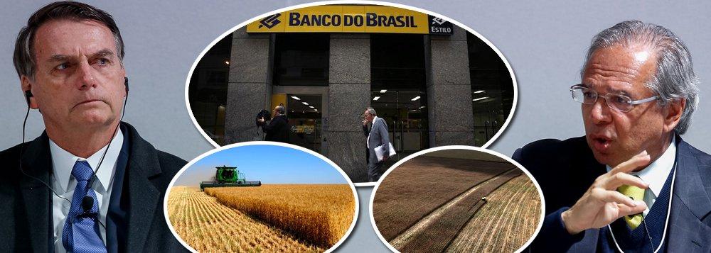 Bolsonaro trai ruralistas e reduz crédito agrícola