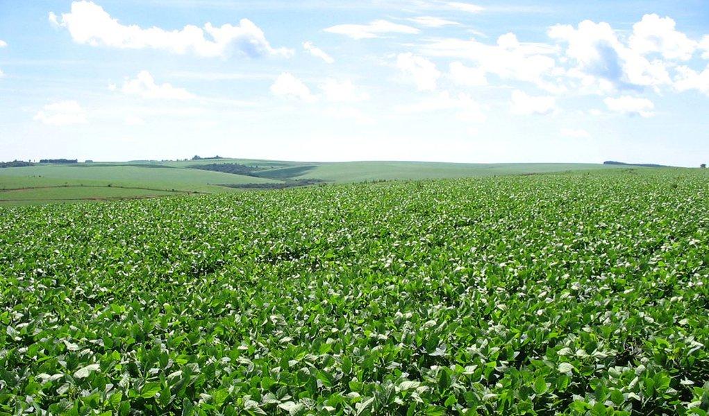 Agroindústria brasileira registra queda de 2,3% em 2011