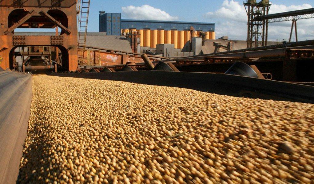 Conab: produção de grãos deve ser 2,8% menor que a da safra anterior
