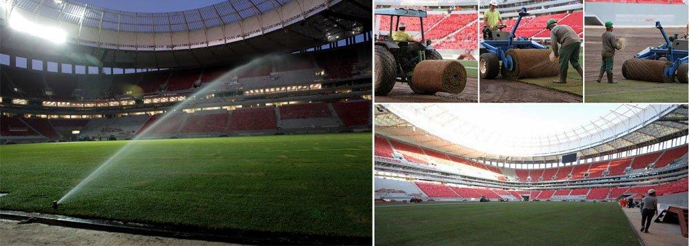 Finalizado o plantio do gramado em Brasília