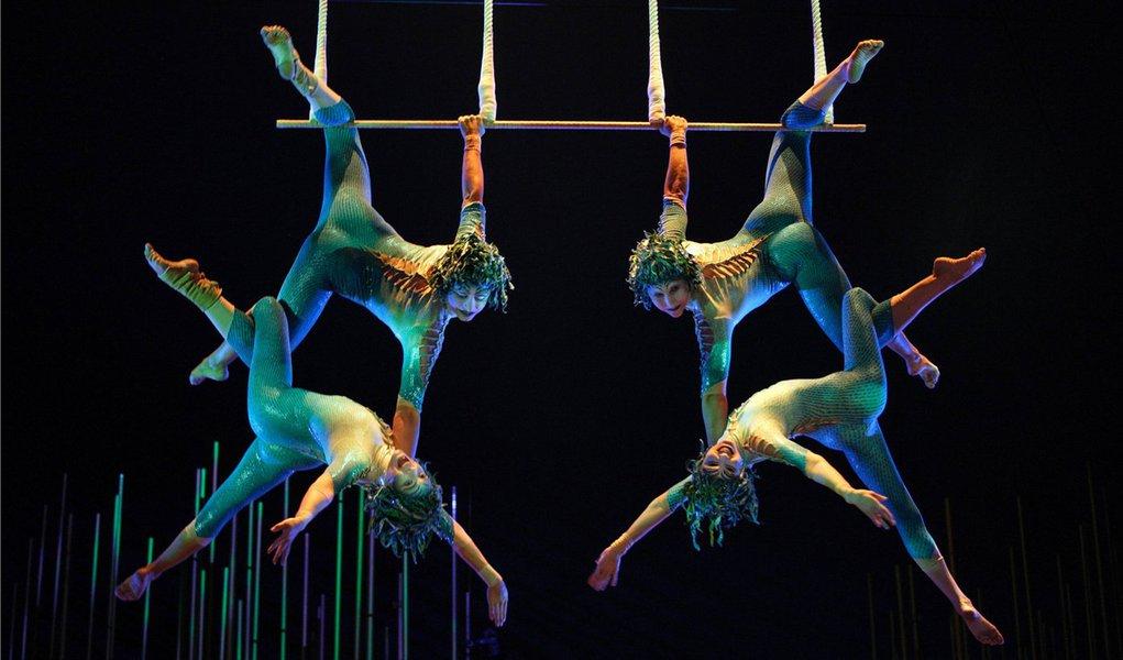 A abelha operária brasileira por trás do Cirque du Soleil
