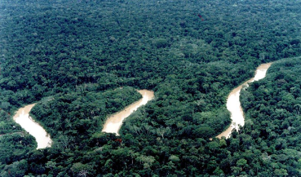 Código Florestal volta à pauta do Congresso