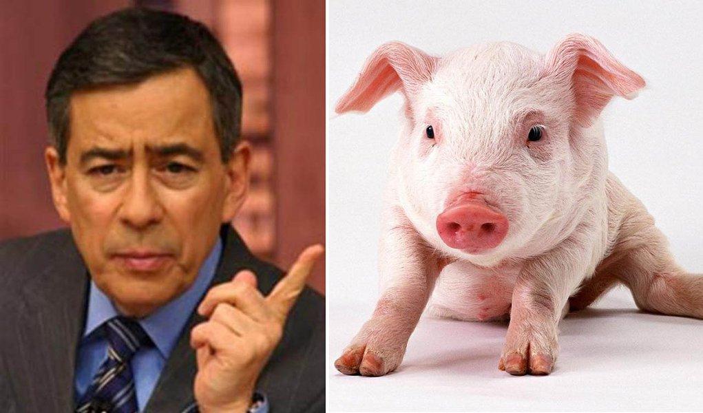 PH processa o que chama de PIG e inclui 247