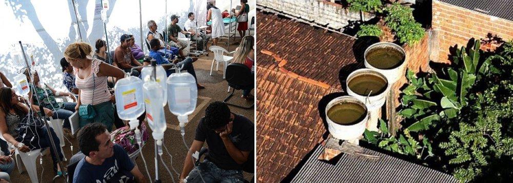 Salvador corre risco de epidemia de dengue