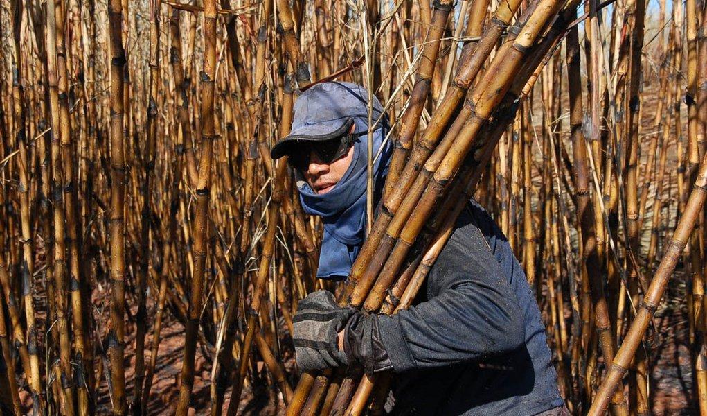 Canavieiros cobram ajuda Federal em função da seca