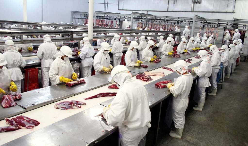 Setor de carne suína prevê baixa para o início de 2013