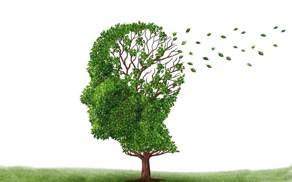 Alzheimer, o inimigo da memória. É a primeira coisa que esse mal ataca