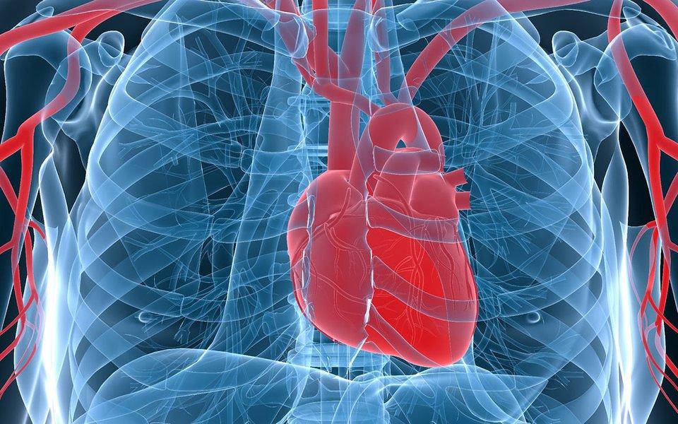 Coração regenerado. Injeção de células-tronco recupera tecidos danificados por infarto.