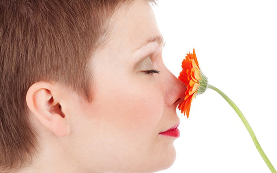 A perda do olfato. Uma síndrome rara e pouco conhecida