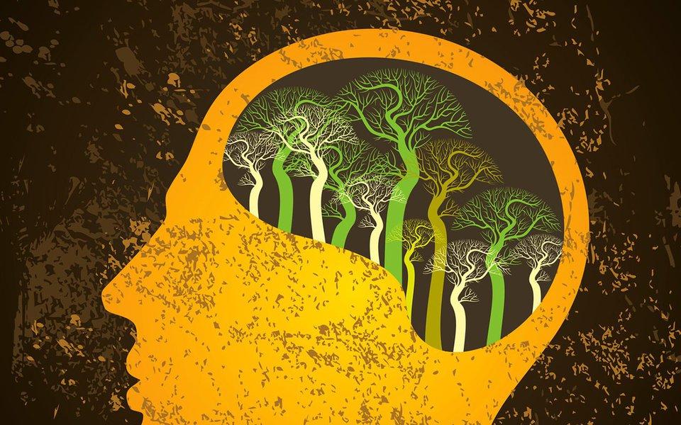 Os neurônios podem se regenerar. Se o cérebro for mantido ativo e o corpo saudável