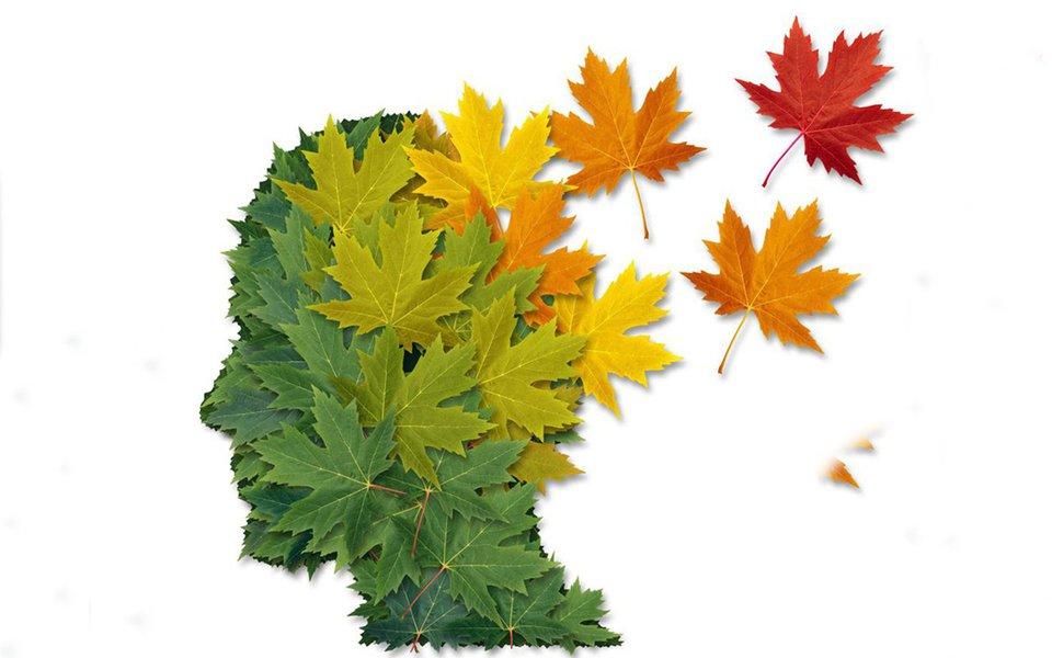 Mistérios do Alzheimer. Ninguém sabe exatamente o que provoca a doença