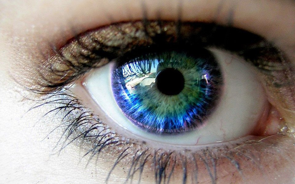 """Cada olho, uma cor. Nosso cérebro """"fabrica"""" as cores"""