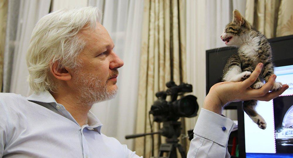 Equador confirma ter concedido cidadania a Assange
