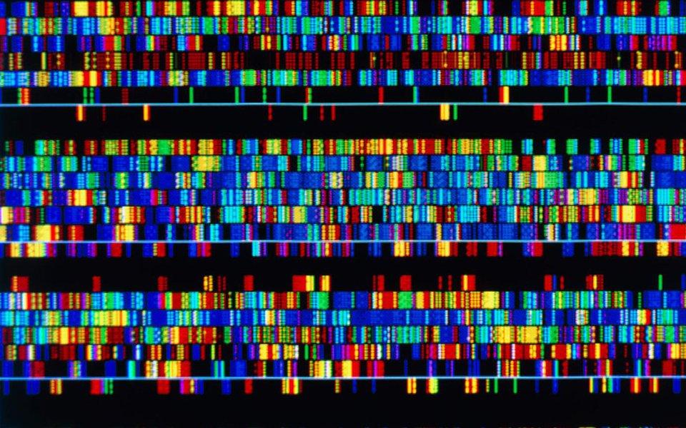 Revolução genética. O genoma chega ao registro civil