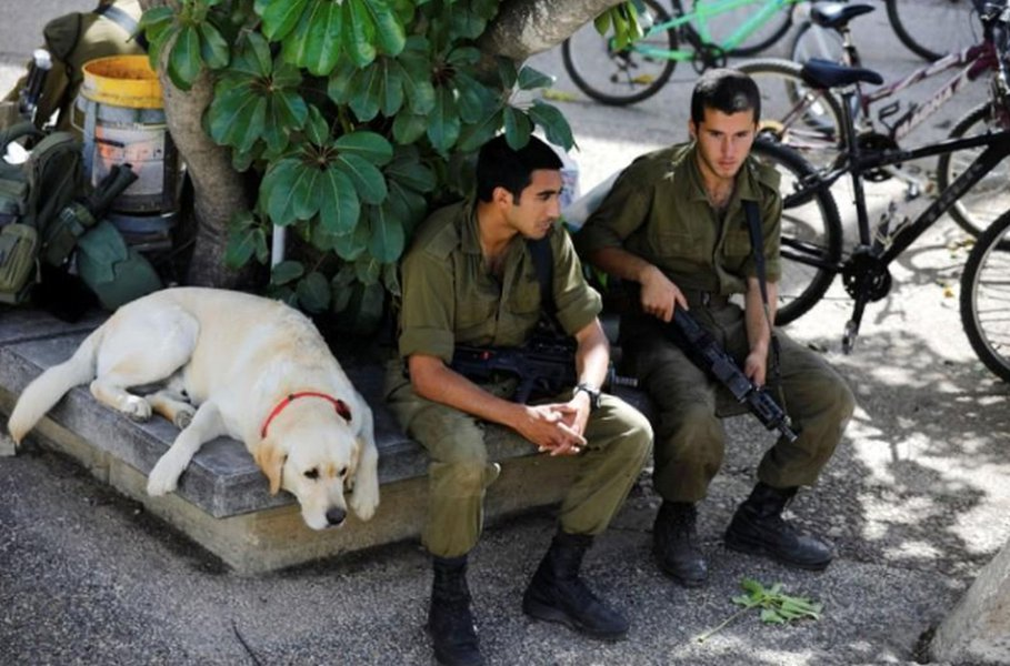 Israel diz que Hamas tentou hackear celulares de soldados com aplicativo da Copa do Mundo