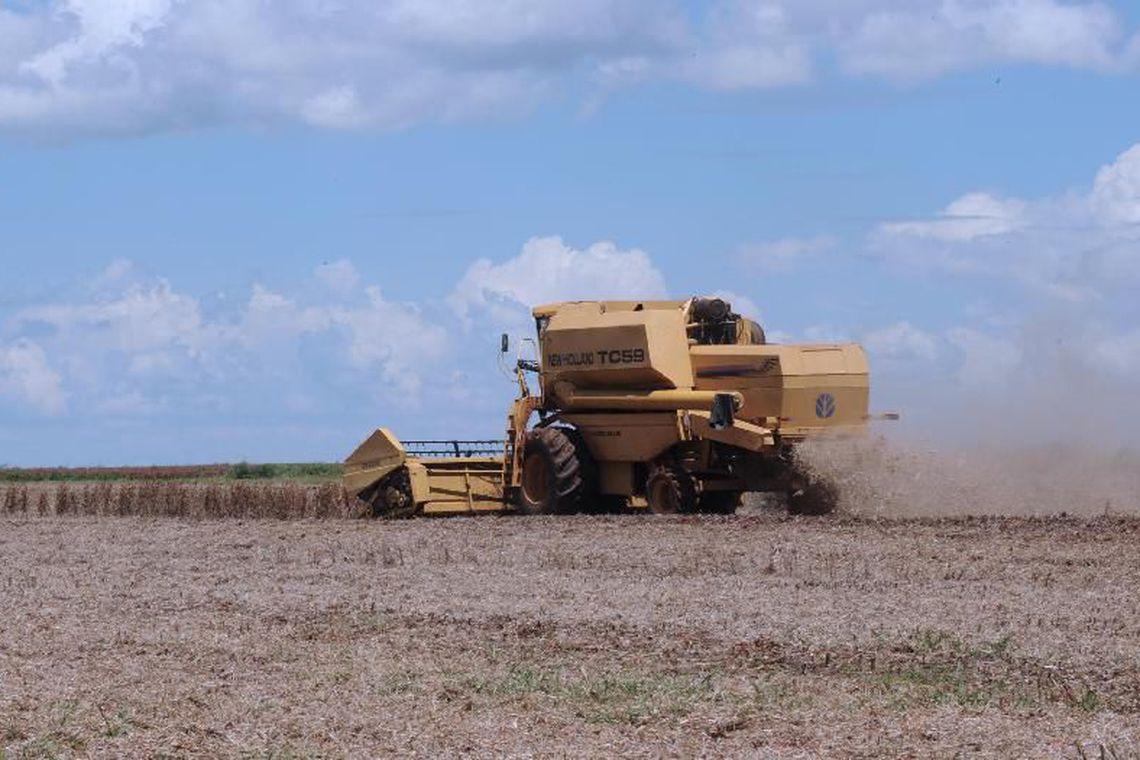 Confiança no agronegócio cai 8,6 pontos no trimestre, diz Fiesp