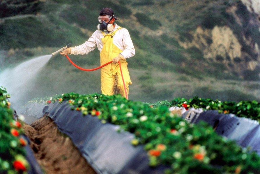 Monsanto é condenada a pagar US$289 mi em 1º julgamento de câncer relacionado ao Roundup