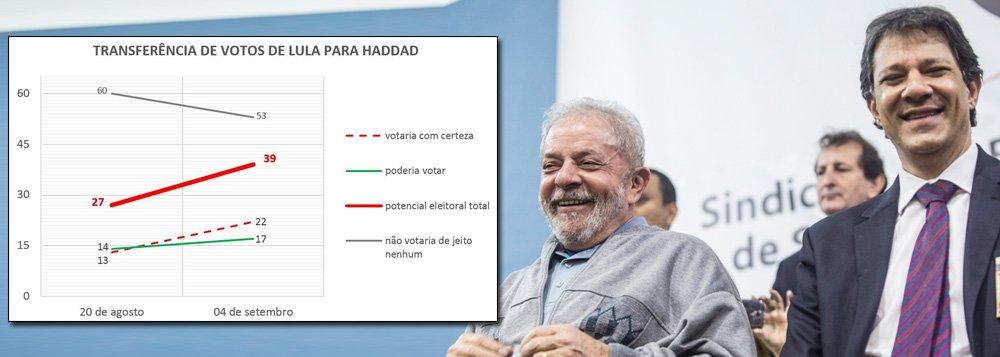 Como candidato de Lula, Haddad já lidera e pode ganhar no primeiro turno