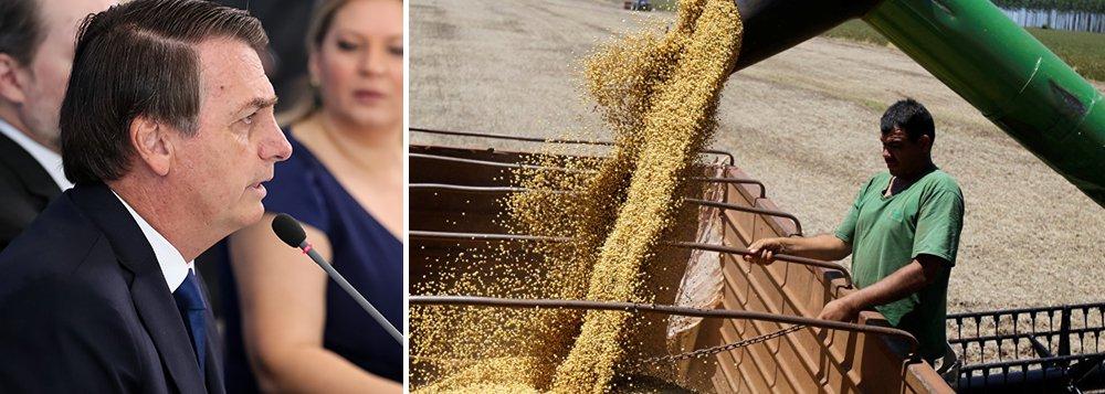 China deixa de comprar soja dos EUA. E agora, Bolsonaro?